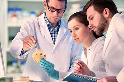 Lektorat einer Masterarbeit der Medizin und Pharmazie